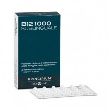 Principium B12 1000...